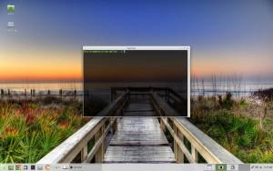 Linux Mint Rebecca Xfce Terminal