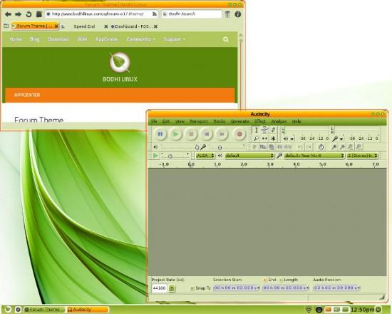 Moksha Bodhi Linux Forum theme